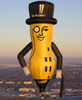 Mr Peanut in flight.JPG