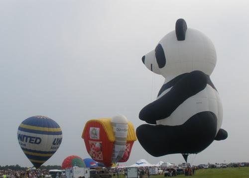 balloons friday night panda 002.jpg